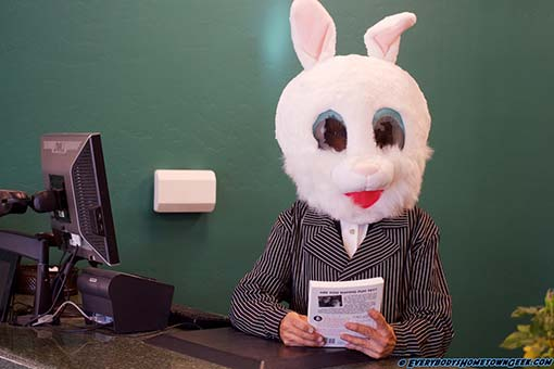 Debbie the Prescott Public Library's resident rabbit is ready to check out a book to a patron at the 1st ever Prescott, Arizona Comic Con 2017.